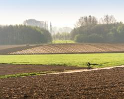 Wandelnetwerk Poelberg - Meikensbossen